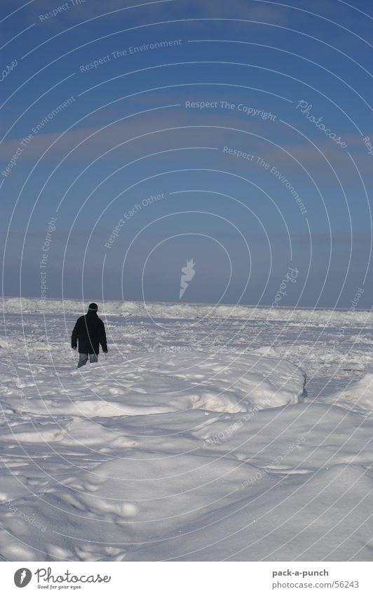 Man Winter Far-off places Ice Horizon Frozen Seasons Baltic Sea Pack ice