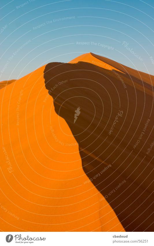 Sand Dune in Namib desert Loneliness Desert Beach dune Namibia