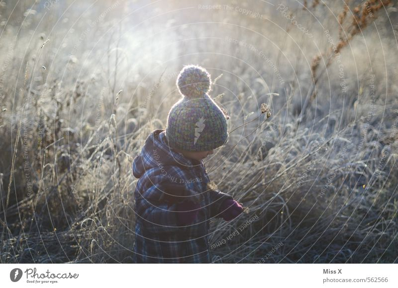Human being Child Nature Flower Winter Meadow Snow Emotions Feminine Grass Moody Ice Weather Masculine Infancy Bushes