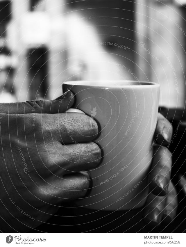 ...something hot now. Black & white photo Close-up Shallow depth of field Buffet Brunch Beverage Drinking Hot drink Hot Chocolate Coffee Tea Mulled wine Cup Mug