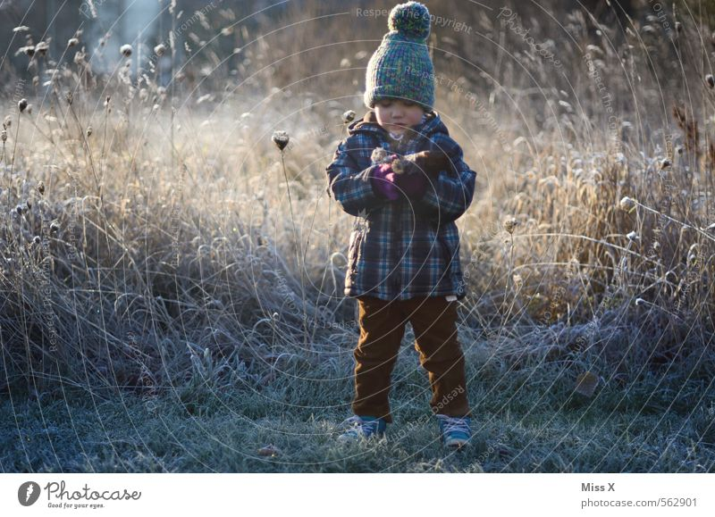 bouquet of hoarfrost Human being Masculine Feminine Child Toddler 1 1 - 3 years 3 - 8 years Infancy Winter Ice Frost Snow Flower Grass Meadow Cold Emotions