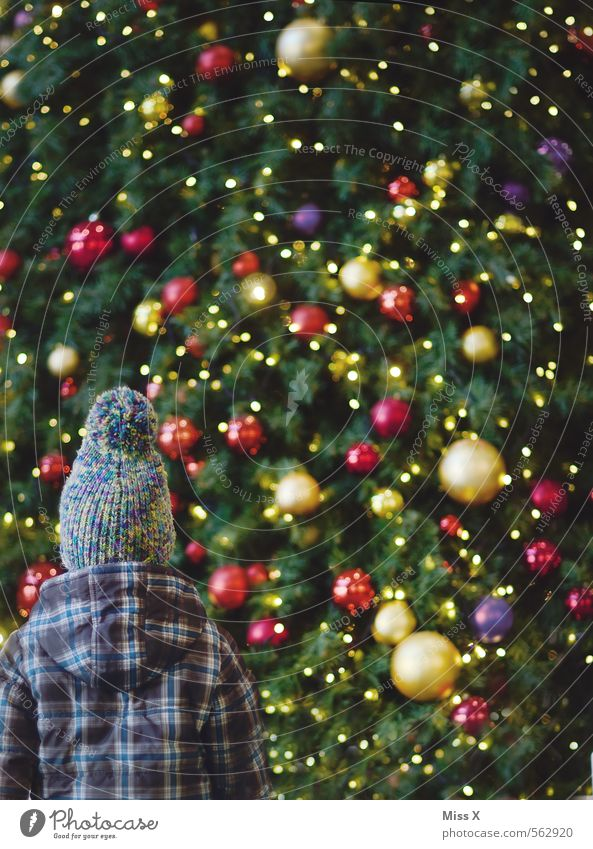 uih Christmas & Advent Human being Child Toddler Girl Boy (child) Infancy 1 1 - 3 years 3 - 8 years Glittering Large Emotions Moody Surprise Christmas tree