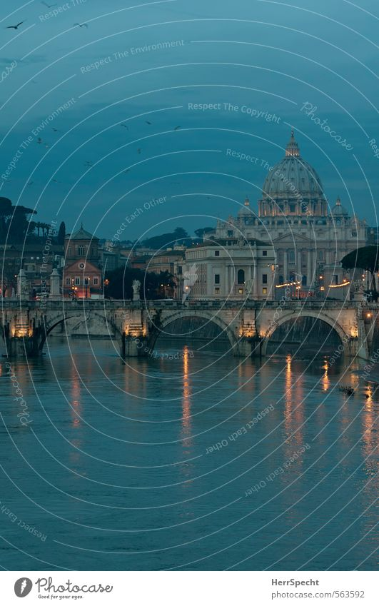 Blue hour at the Tiber River bank Rome Vatican Italy Town Capital city Downtown Old town Church Dome Bridge Building Tourist Attraction Landmark Monument
