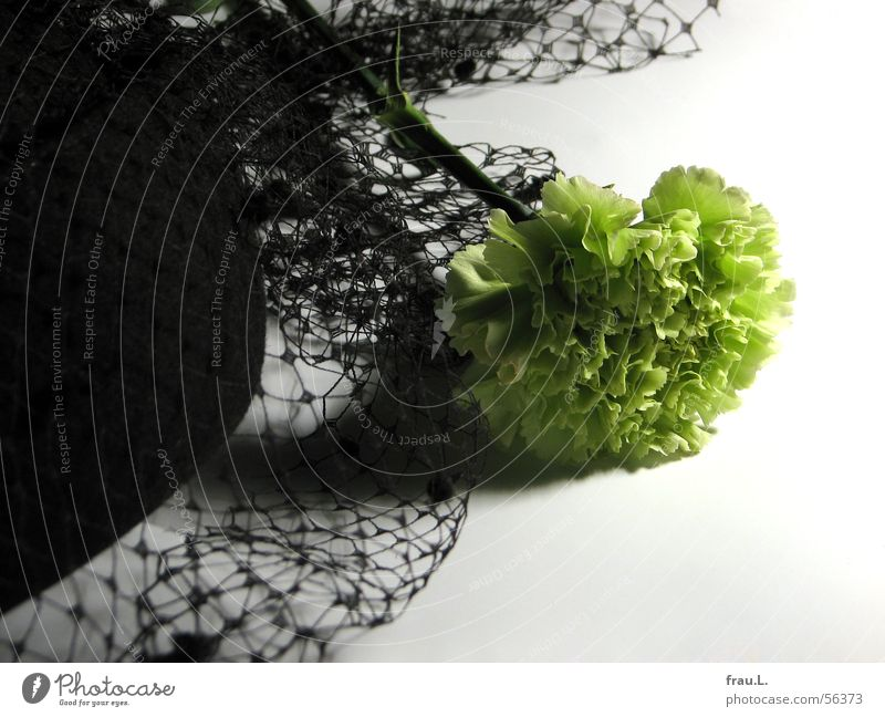 Funeral atmosphere - the last Sombre mood Flower Baseball cap Vail Feminine Felt Green Yellow Going out Chic Clothing The bride was wearing black Nature Hat