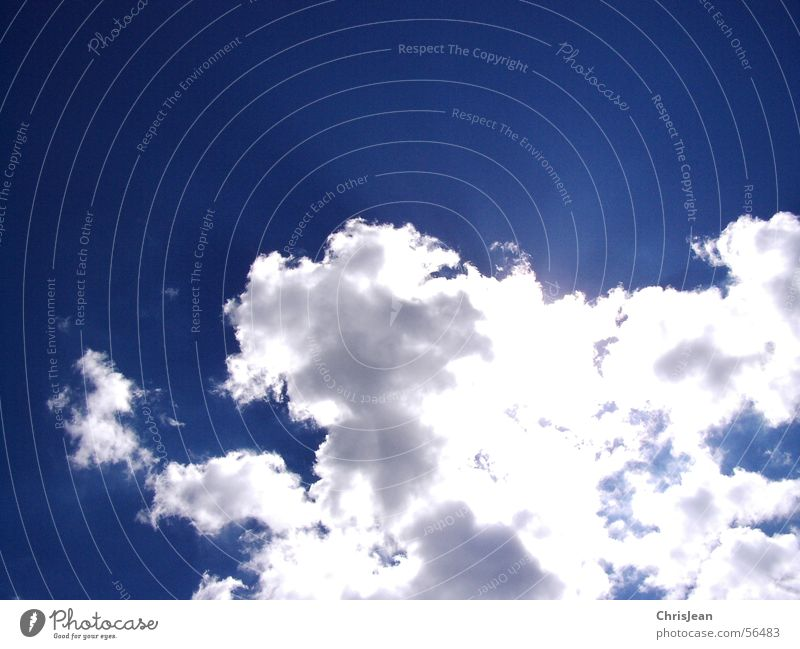 Sky White Sun Blue Clouds Bright Blue sky Awareness Airy Shaft of light White-blue