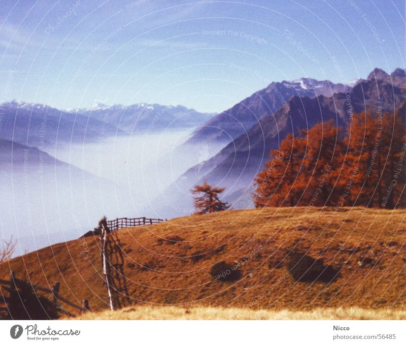 Sky Vacation & Travel Blue Beautiful Sun Tree Red Landscape Clouds Joy Far-off places Mountain Meadow Autumn Grass Snow