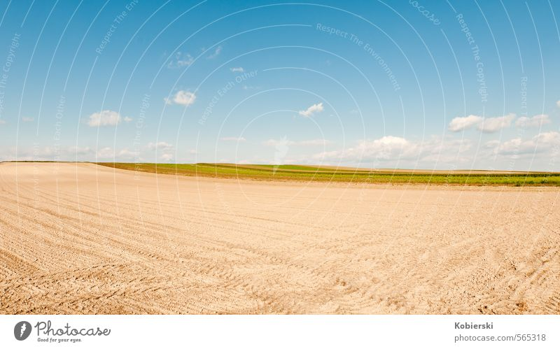 After the harvest Food Grain Agriculture Farmer Earth Sand Sky Clouds Autumn Field Working in the fields Eating Natural Blue Brown Yellow Business Loneliness