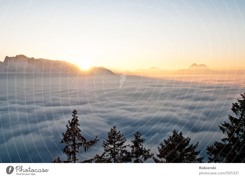 Sunset at the Gaisberg Tourism Winter Snow Mountain Environment Nature Sky Clouds Horizon Ice Frost lower mountain Watzmann Federal State of Salzburg Looking