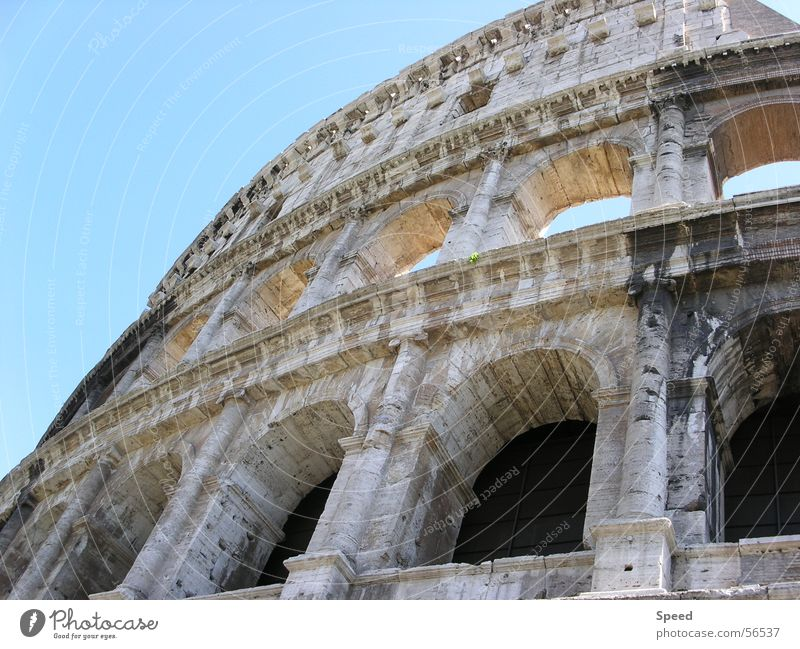 Old Sky Vacation & Travel Window Stone Building Italy Past Historic Rome Ancient Blue sky Römerberg Colosseum Gladiator