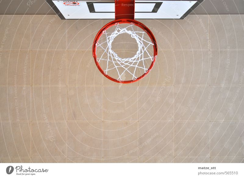 much too small to stuff Leisure and hobbies Playing Sports Ball sports Basketball Basketball basket Sporting Complex Gymnasium Ceiling Net Circle Wooden board