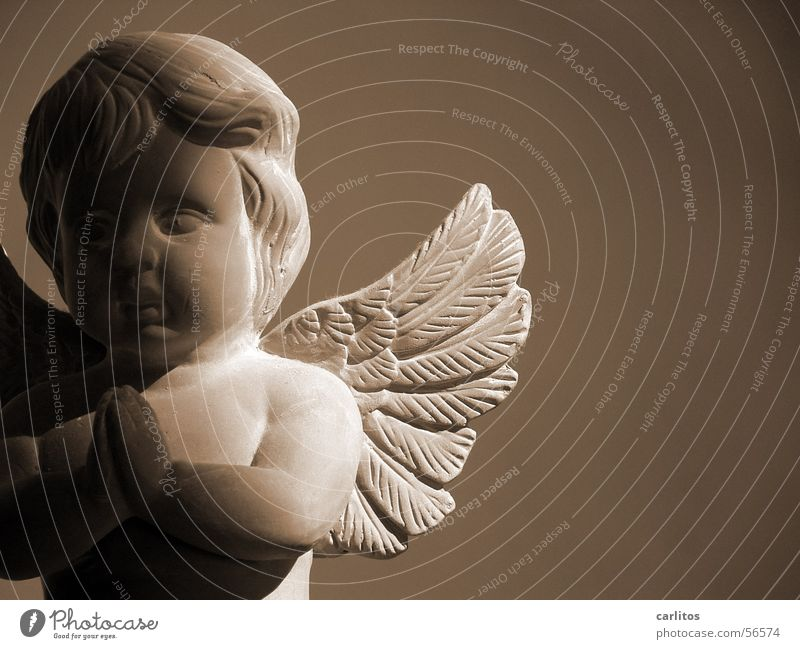 Angel Wing Prayer Sepia Innocent Penumbra Terracotta
