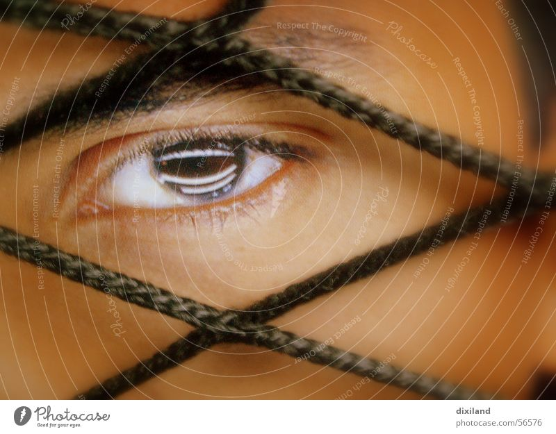 Human being Face Eyes Net