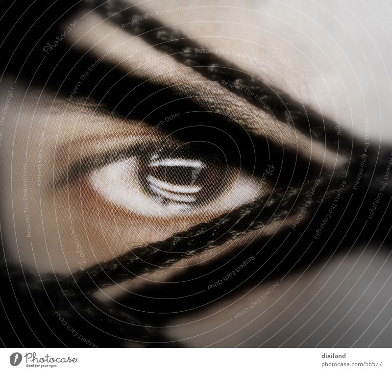 eye-catcher Reflection Eyes Face Net Human being Close-up Looking