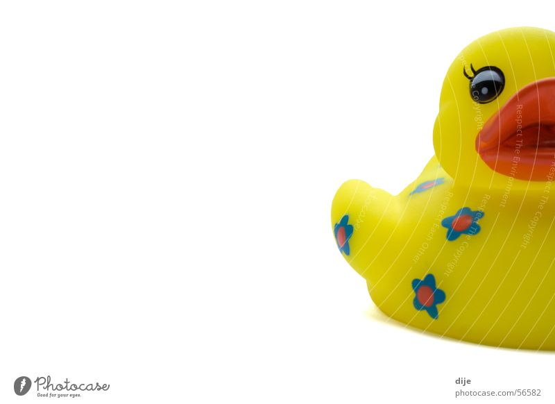 Shall we go for a swim????? Squeak duck Swimming & Bathing Bathtub Yellow Rubber Toys Playing White Turquoise Wellness Bathroom Flower Animal Humor Half Gift
