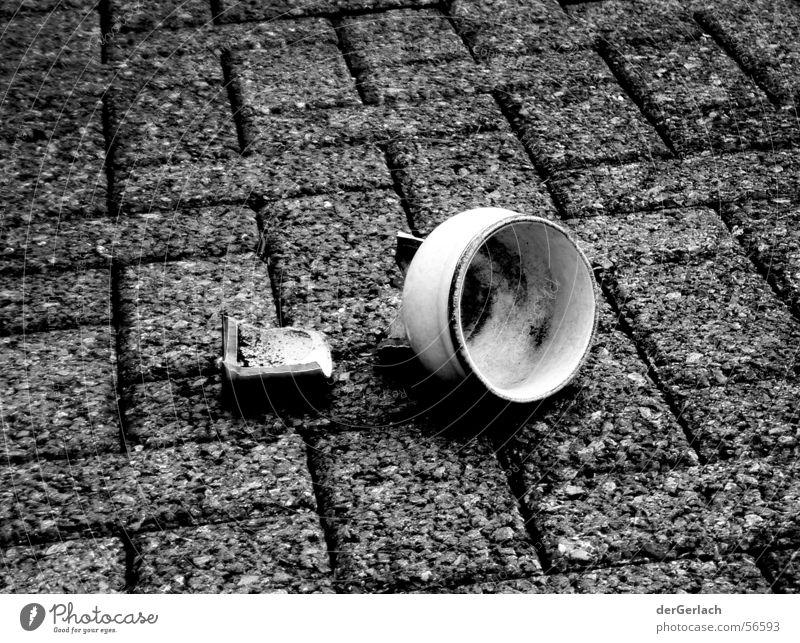 shards Shard Vase Cold Fate Flower Garden Dirty Black & white photo
