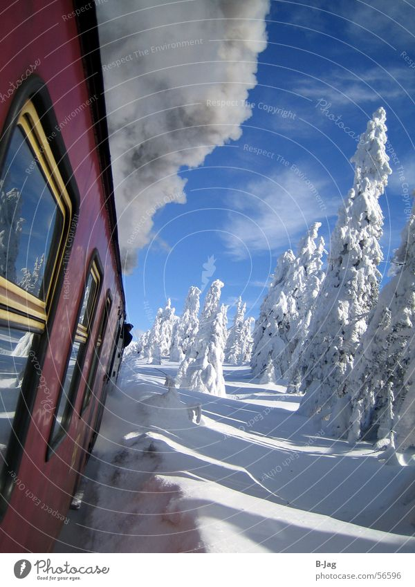 Brocken Railway Winter Cold White Ice Speed Cozy Tree Snow Window Gray Smoke-filled Exterior shot Action Landscape Clarity Railroad Reflection Closed To enjoy