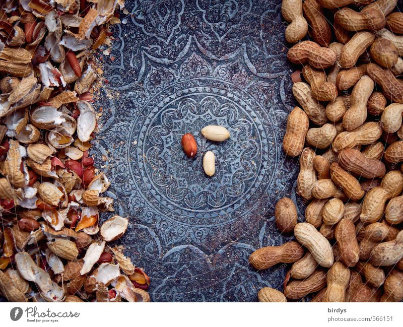 Love of order in the nutshell Nut Peanut Bowl Esthetic Exotic Delicious Positive Round Beautiful Orderliness To enjoy Center point Kernels & Pits & Stones