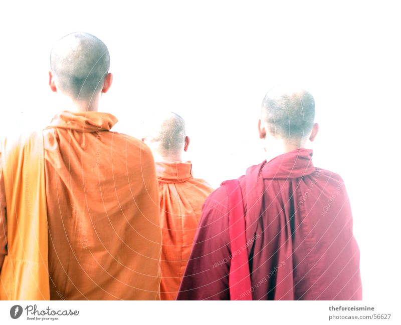 monks Thailand Monk Bald or shaved head Robe Costume Red Yellow Cape Religion and faith Awareness Light Back-light Clergyman Buddhism Asia Asians Buddha Orange