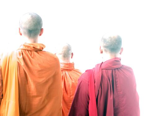 Red Yellow Head Religion and faith Orange Asia Bald or shaved head Thailand Cape Awareness Clergyman Costume Buddha Asians Monk Buddhism