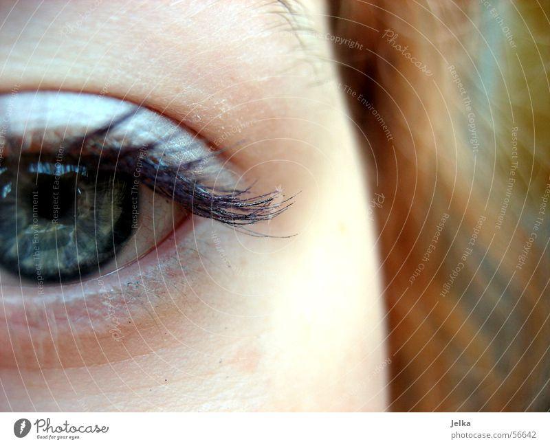 Blue Face Eyes Gray Hair and hairstyles Skin Eyelash Partially visible Pupil Mascara Wearing makeup Women's eyes Eye shadow Eye colour