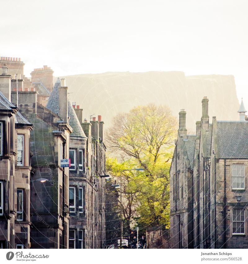 Edinburgh XIII Tree Rock Mountain Scotland Great Britain Town Capital city Populated House (Residential Structure) Facade Roof Chimney Esthetic Bright green