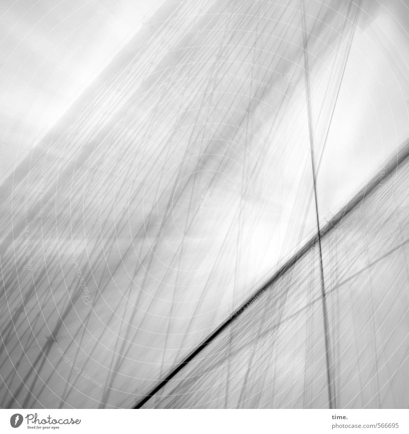 Windy Rope Technology Steel cable Steel construction Sky Clouds Autumn Gale New York City Bridge Manmade structures Architecture Brooklyn Bridge Historic