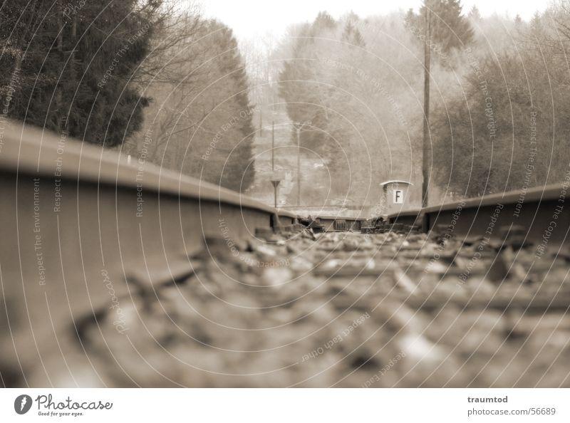 Forest Stone Railroad Railroad tracks String Depth of field Tram Sepia Engines Hue Wetzlar Aßlar Ehringshausen