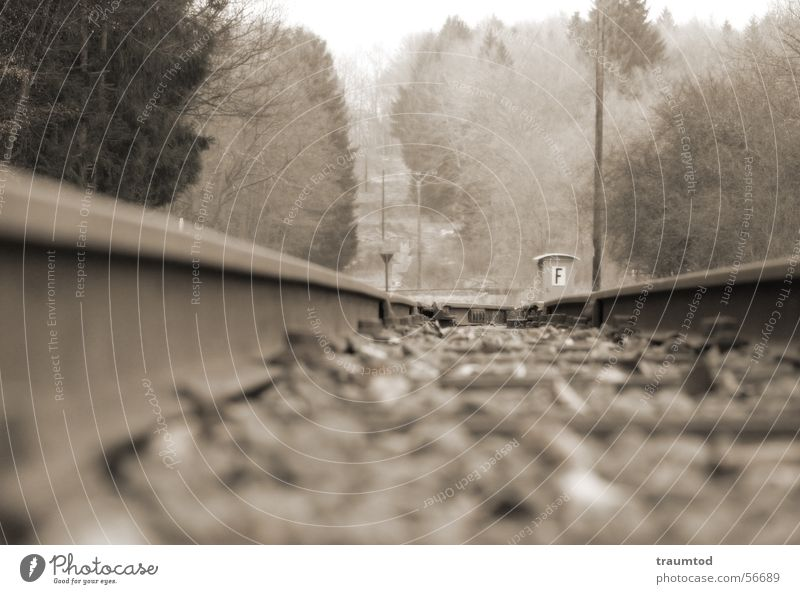 railway line Aßlar Ehringshausen Wetzlar Railroad tracks Engines Tram Depth of field Forest String stranded track Stone Sepia Hue Macro (Extreme close-up)