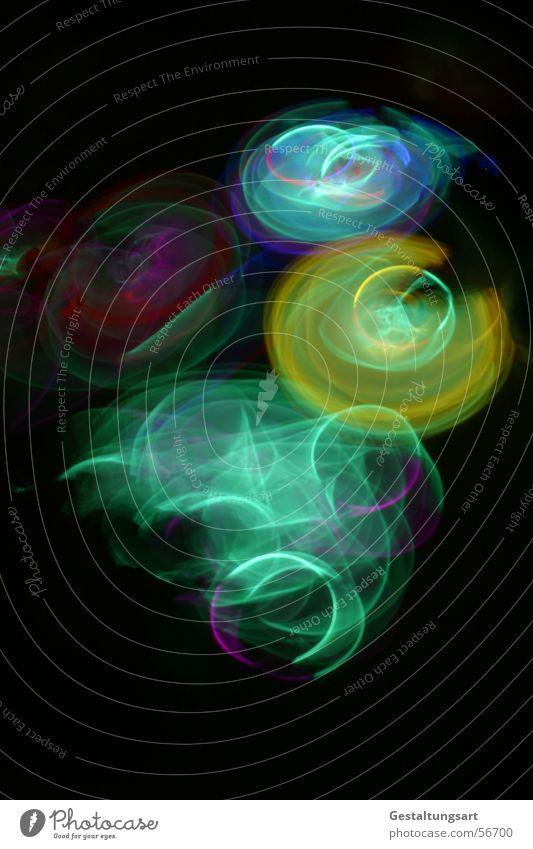 Blue Beautiful Green Colour Red Joy Black Yellow Life Lamp Jump Art Dance Wild animal Wing Creativity