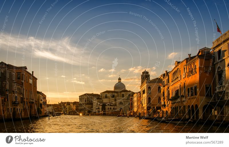 golden Venice Italy Europe Village Town House (Residential Structure) Vacation & Travel Canal Grande Colour photo Exterior shot Evening Sunrise Sunset