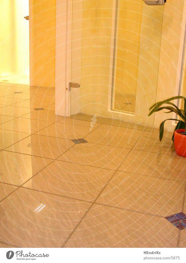 ROOM/half/plant Plant Light Living or residing Room Door