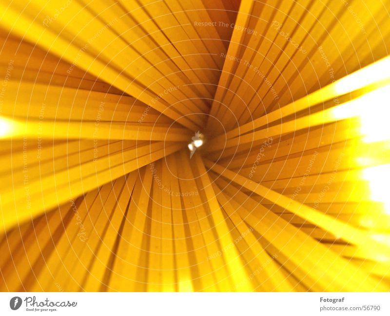 Water Sun Yellow Lighting Orange Food Nutrition Point Cooking & Baking Italy Gastronomy Long Bouquet Hollow Macro (Extreme close-up) Spiral