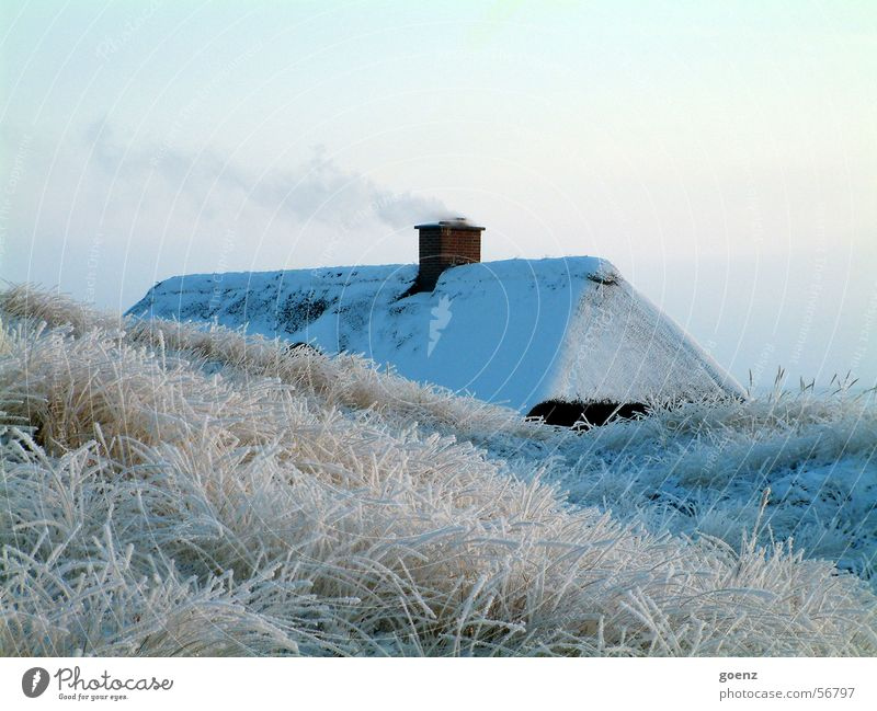 Winter Vacation & Travel House (Residential Structure) Cold Smoke Beach dune Chimney North Sea Denmark Reet roof Thatched roof