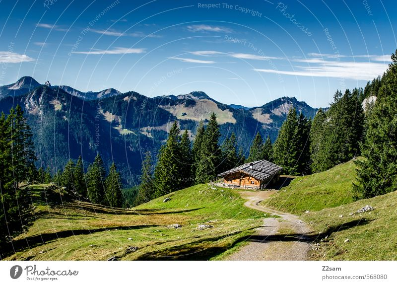 hiking day Mountain Hiking Nature Landscape Sky Autumn Beautiful weather Alps Hut Far-off places Tall Natural Adventure Loneliness Freedom Leisure and hobbies