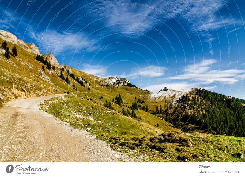 Sky Nature Blue Green Relaxation Landscape Far-off places Forest Environment Mountain Meadow Autumn Lanes & trails Natural Leisure and hobbies Idyll