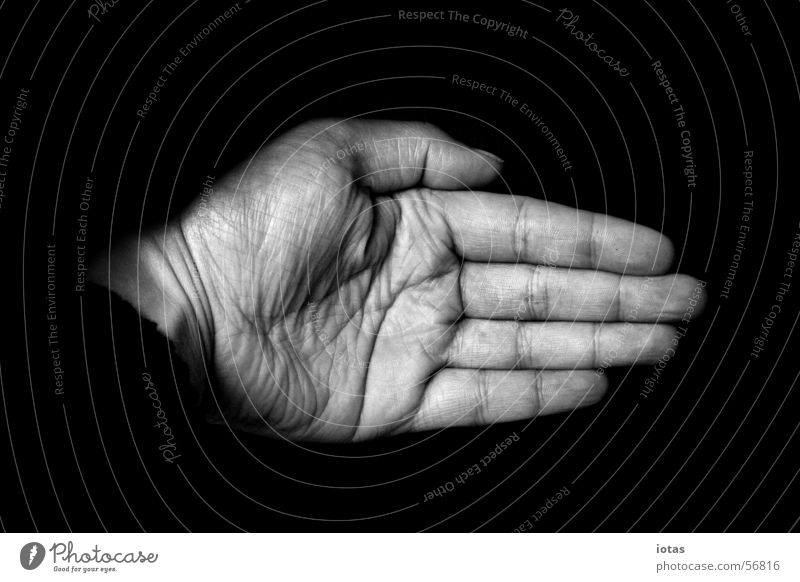 hand Hand Fingers Black White Masculine Man Fingernail Nail Palm of the hand Senior citizen Power Force Safety Black & white photo bw B&W left digit creases