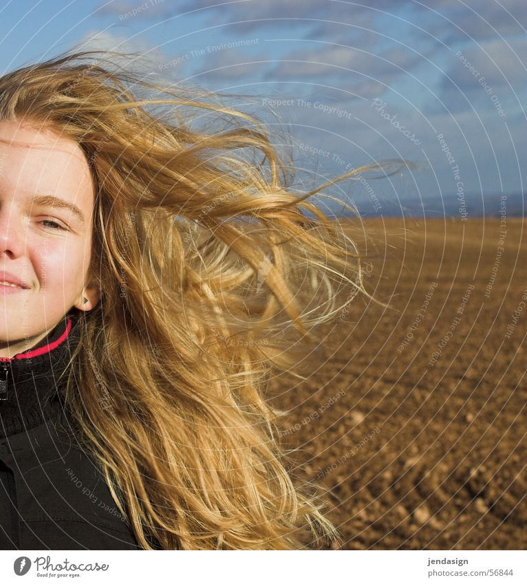 Hair in color Girl Blonde Field Cold Wind Hair and hairstyles Face Laughter