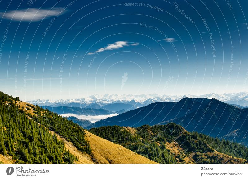Rotwand view Trip Mountain Hiking Nature Landscape Sky Autumn Forest Alps Gigantic Sustainability Blue Yellow Green Freedom Idyll Perspective Environment