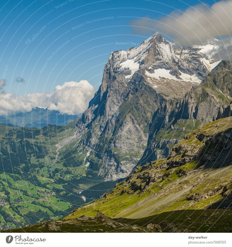 At the foot of the Eiger north face Nature Landscape Sky Clouds Summer Beautiful weather Snow Grass Moss Rock Alps Mountain Peak Snowcapped peak Glacier Old