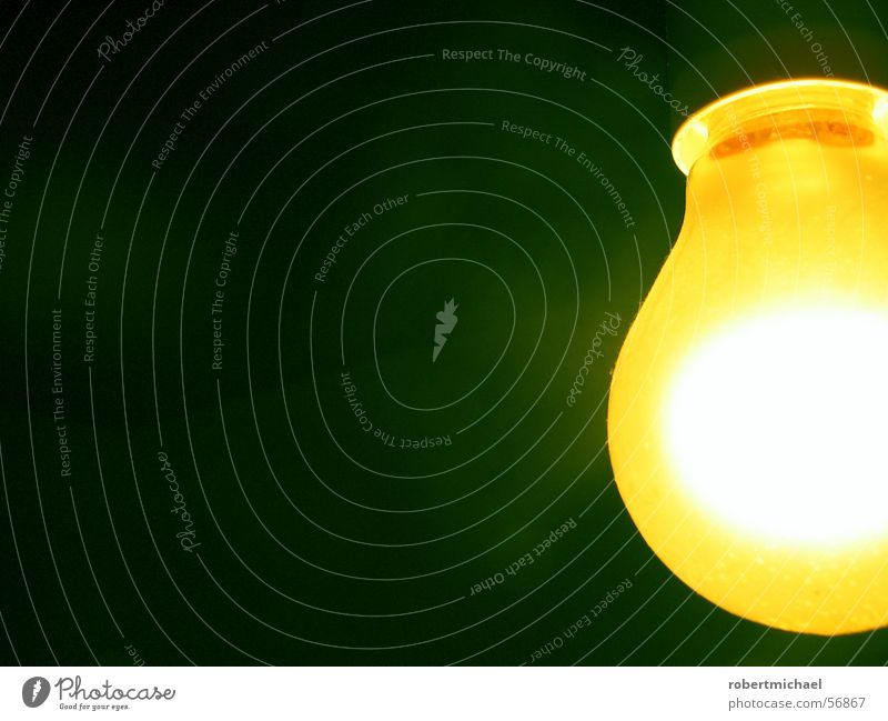 Green Colour Dark Yellow Wall (building) Lighting Lamp Moody Bright Room Living or residing Gold Things Electricity Idea Romance