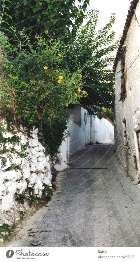 House (Residential Structure) Street Wall (barrier) Greece Alley