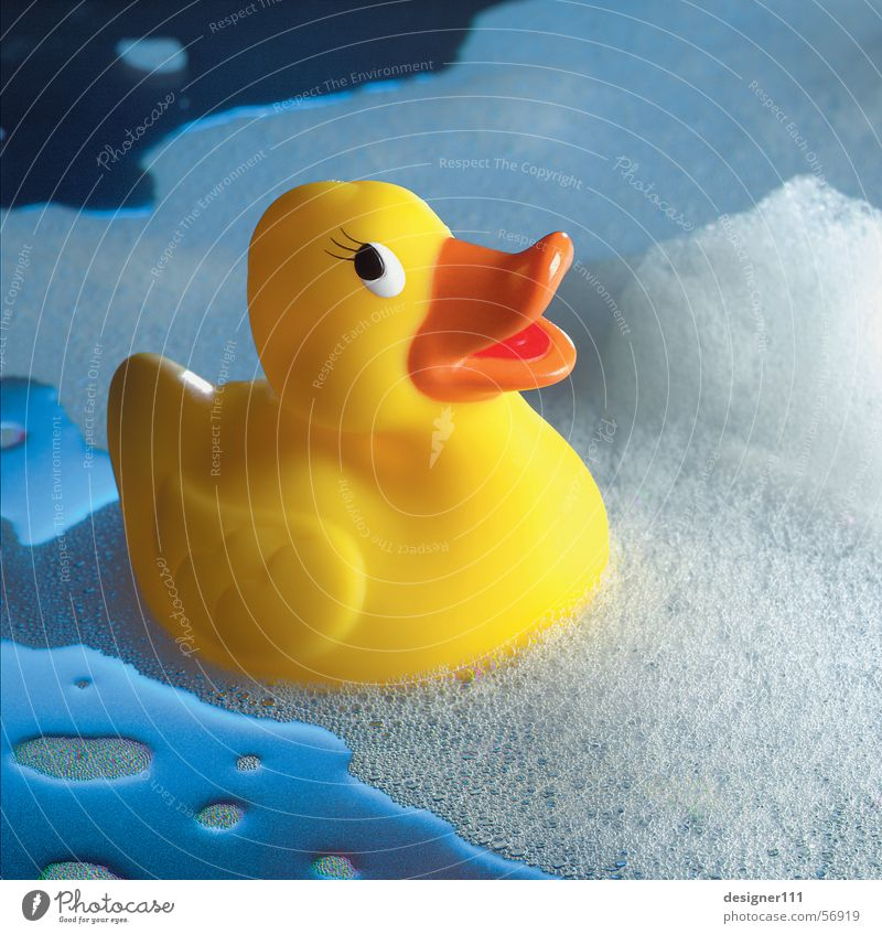 squeaky duck Bathtub Toys Squeak duck Yellow Wet Foam Soap Swimming & Bathing Shower tub Events Childlike Cold Physics Romance Duck Water Blue Bubble bath