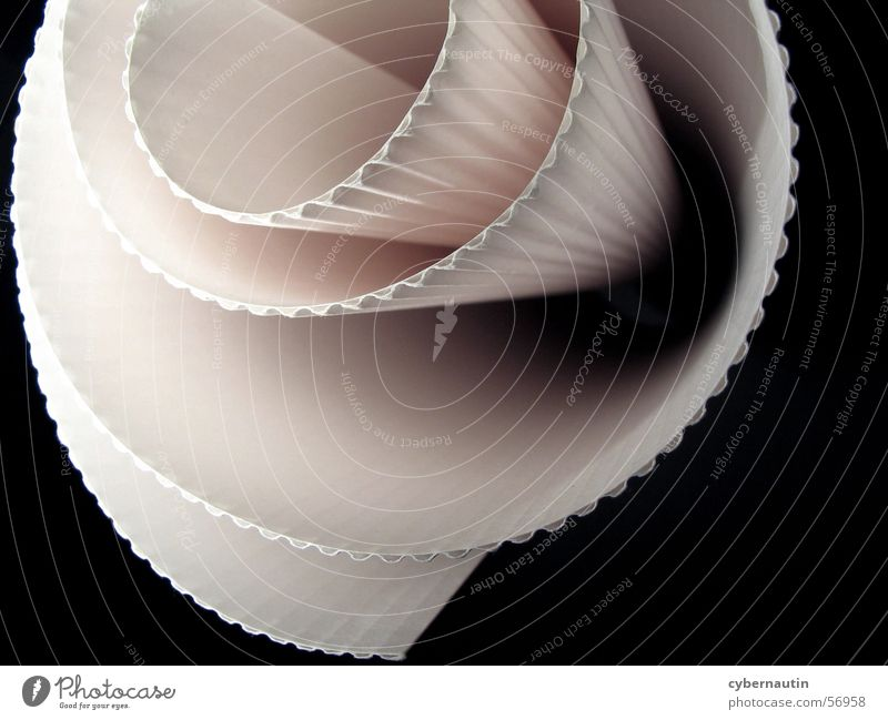 White Pink Paper Cardboard Furrow Spiral Oval