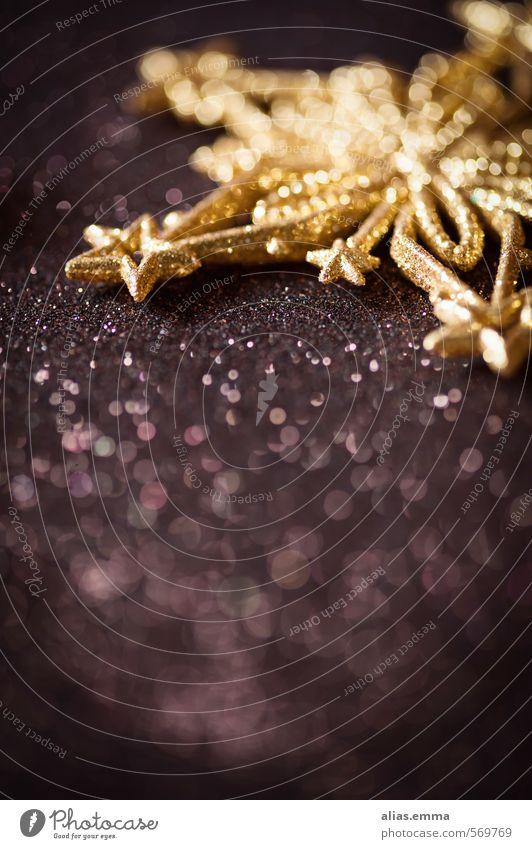 Christmas & Advent Winter Dark Brown Gold Glittering Elegant Decoration Simple Star (Symbol) Kitsch Card Festive Enchanting Ornament
