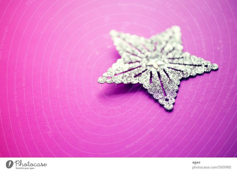 Star on pink Paper Decoration Starling Gold Sign Emotions Moody Colour photo Multicoloured Detail Macro (Extreme close-up) Deserted Copy Space left