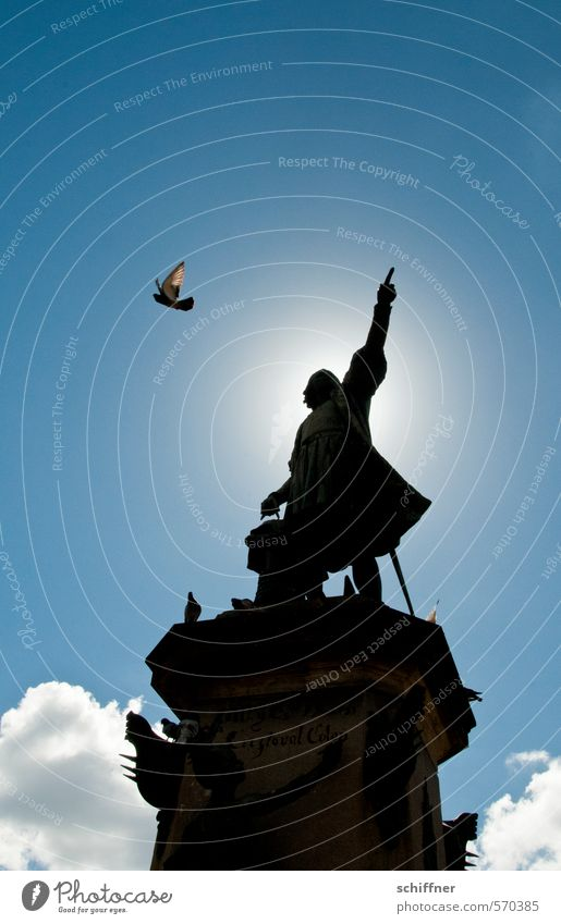 Blue Animal Bird Wing Sign Manmade structures Landmark Monument Direction Tourist Attraction Statue Divide Pigeon Forefinger Trend-setting Halo