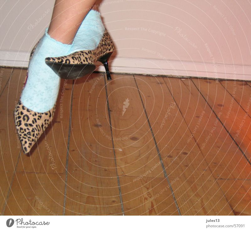 Wall (building) Wood Feet Room Skin Turquoise Stockings Hallway Cat Partially visible High heels The eighties Tiger skin pattern Puma