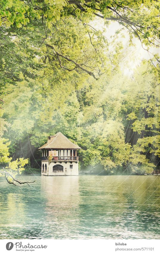 Nature Green Water Plant Yellow Environment Brown Lakeside Summer vacation Summery Boathouse Lake Thun
