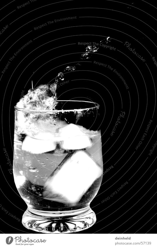 ice cubes Ice cube Inject Mineral water Water Drops of water Glass Black & white photo