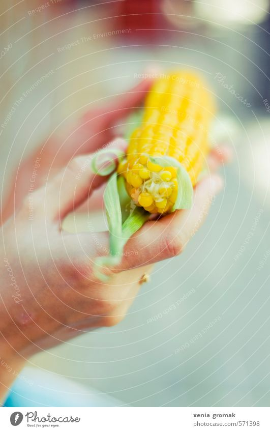 maize Vegetable Nutrition Eating Picnic Organic produce Vegetarian diet Diet Slow food Finger food Leisure and hobbies Vacation & Travel Tourism Trip Adventure
